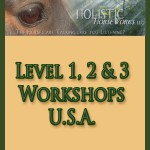 Workshops - USA