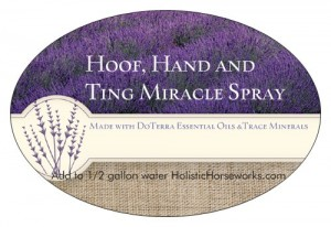 This amazing spray my clients are now calling 'The Miracle' spray has many uses.